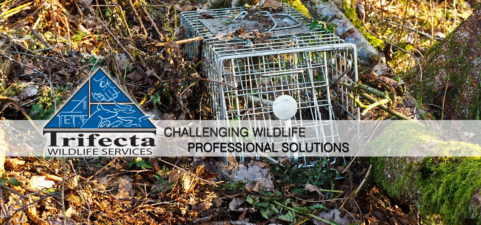 <div class='slider_caption'> <h1>Challenging Wildlife, Professional Solutions.  Call us today! (859) 415-4226</h1> <a class='slider-readmore' href=''>Read More</a>   </div>