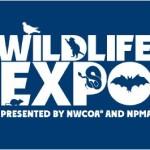 Wildlife Expo