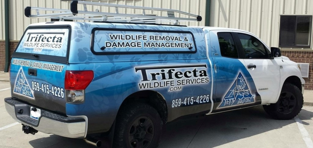 Trifecta Wildlife Services' Animal Removal and Wildlife Removal Truck in Lexington KY