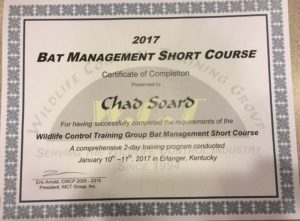 WCT Bat Management Short Course Certificate
