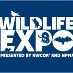 Wildlife Expo