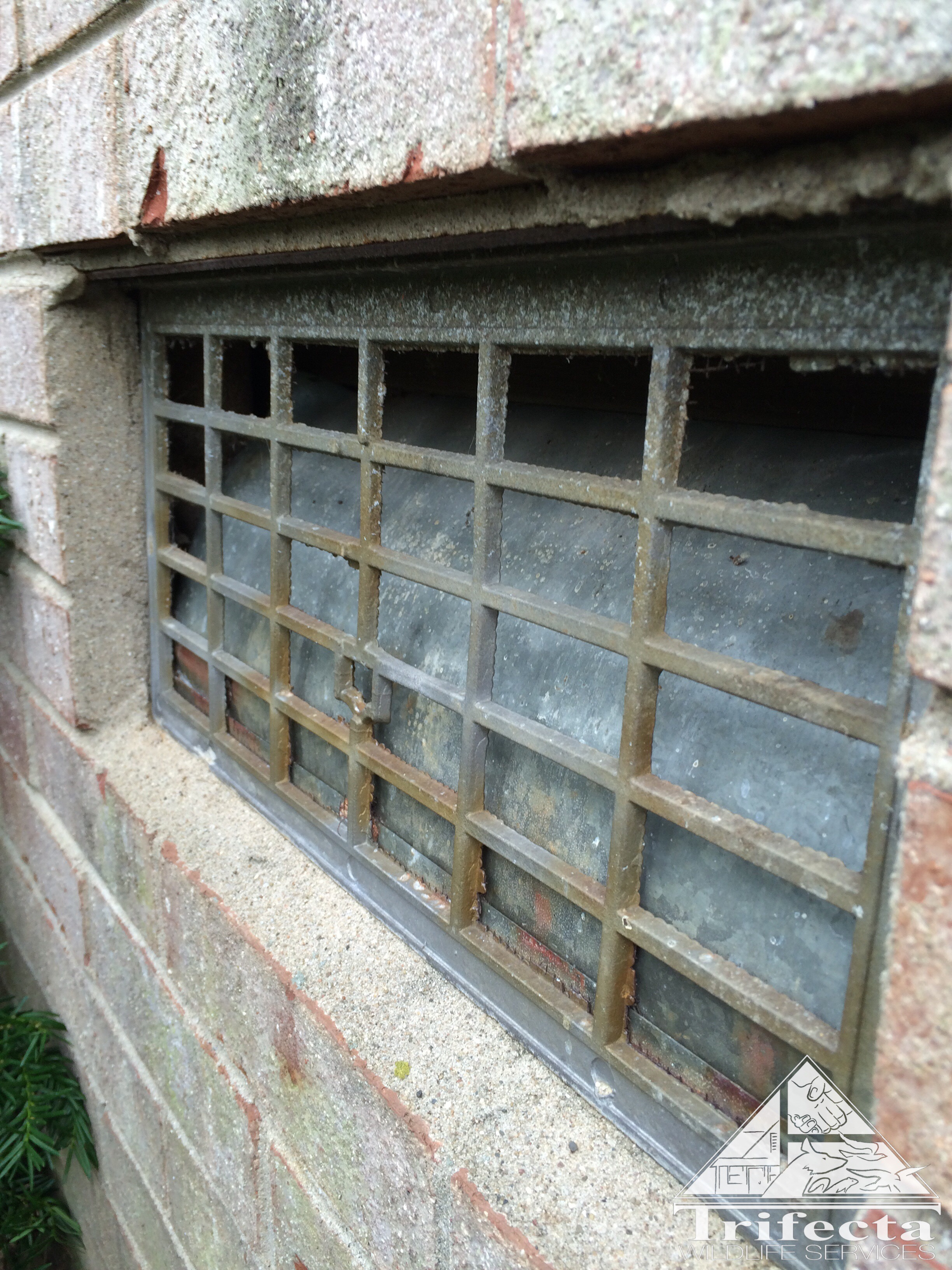 Mouse entry through unprotected foundation vent