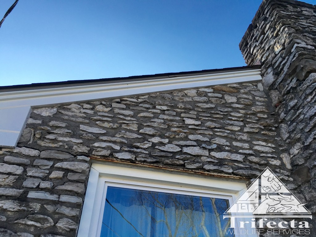 Construction gap between stone and fascia professionally sealed with limestone colored Solar Seal 900