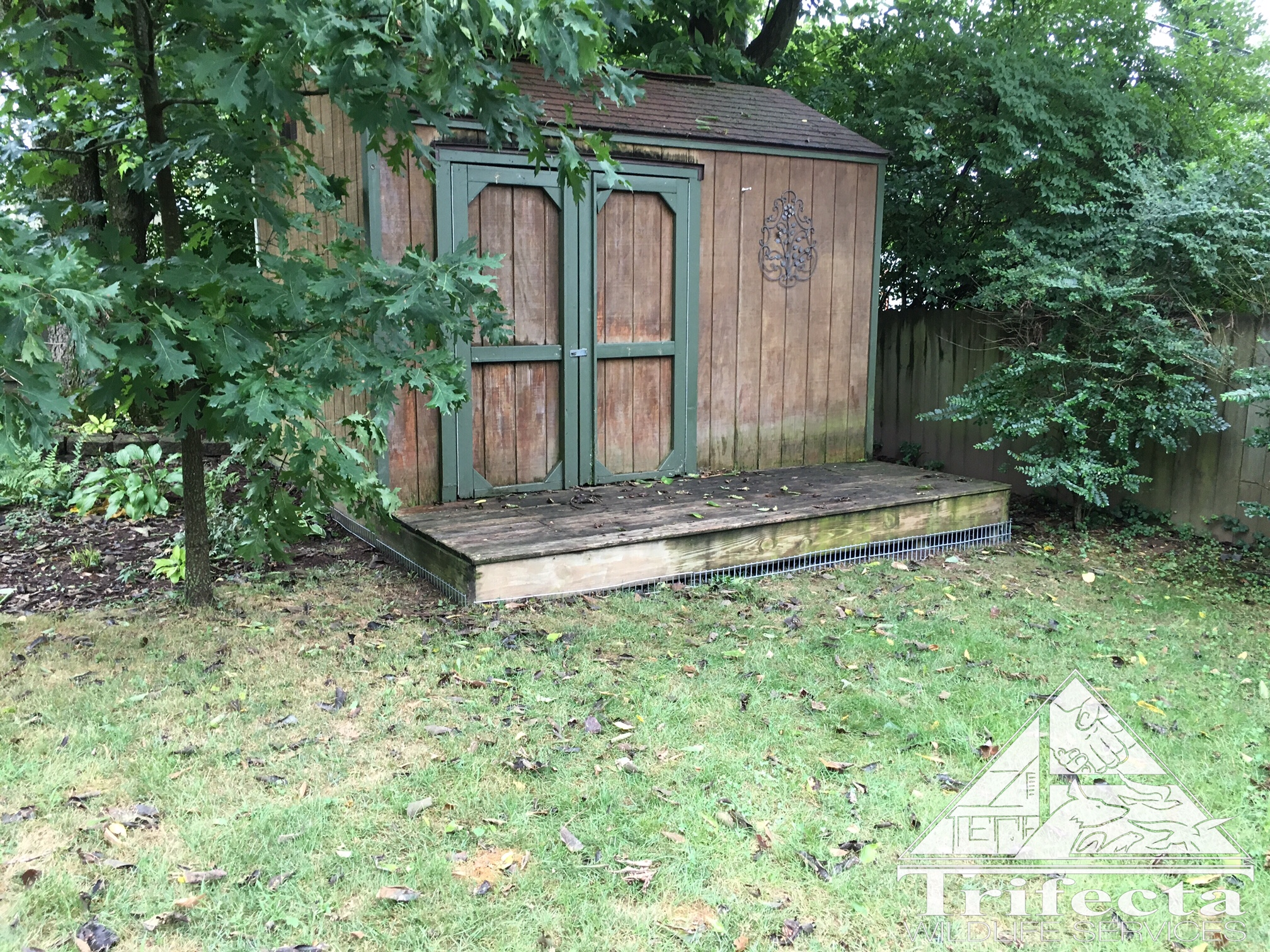 Shed with a Dig Defence Installation